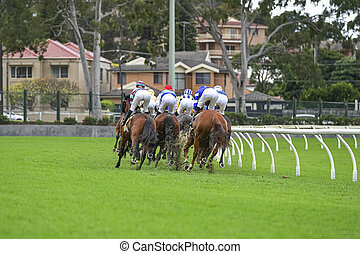 A field of horses and jockeys during a race