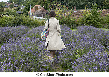 field of lavender at Mayfield Lavender farm on the Surrey Downs. Selective focus. Selective focus. Woman in beautiful cloak from back to field