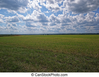 a field with cut grass on a cloudy day in summer