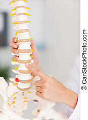 A finger pointing at bone in spine - A finger is pointing at...