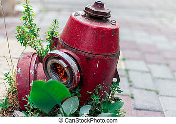 A Fire Hydrant from an Urban Street