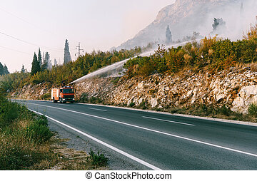 A fire truck on the road puts out a fire in the forest.