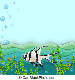 A fish under the sea - Illustration of a fish under the sea