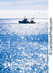 A fishing boat on the blue sea
