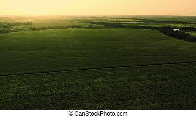 A Flight Over An Endless Green Field. Aerial. - A Flight...