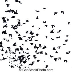 A flock of migratory birds. set of black silhouettes of ...