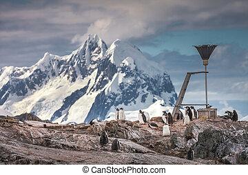 A flock of penguins . Antarctic mountains.