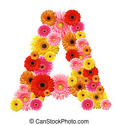 A, flower alphabet isolated on whit