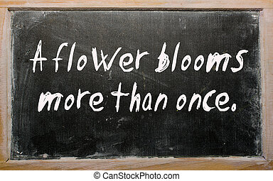 """A flower blooms more than once"" written on a blackboard"