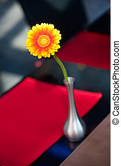 A flower in a vase on the table