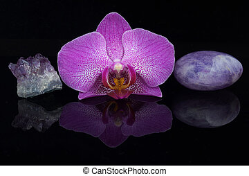 A flower of a pink orchid between different amethyst stones on a black background.
