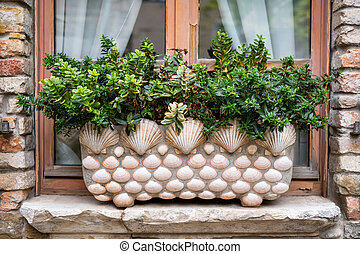 A flower pot decorated with sea shells