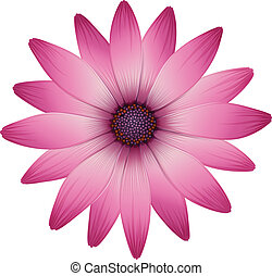 A flower with pink petals - Illustration of a flower with...