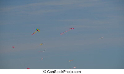 A flying flock of multicolor kites - A flock of multicolor...