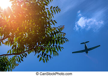 A flying plane on the background of a beautiful summer sky and a ray of sun making its way through the green foliage