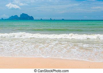 A foamy sea wave runs over a deserted sandy beach