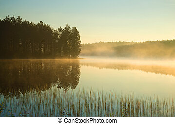 A foggy august morning on a forest lake. Finland