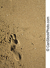 A footprint in the sand