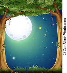 A forest and the bright moon