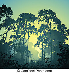 Forest Landscape - A Forest Landscape with Trees and Sunset...