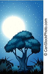 A forest night scene