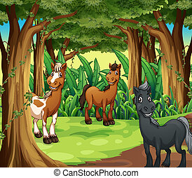 A forest with three smiling horses