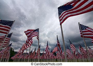 a, fosterländsk, ordning, av, amerikan flaggar, föreställa,...