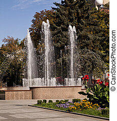 a fountain is in a park