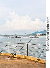 A four-fishing