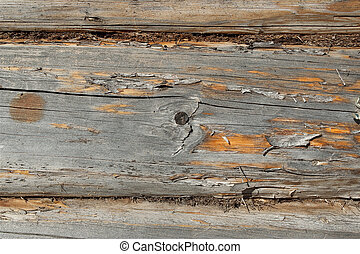 A fragment of a wooden wall