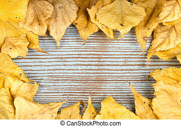 A frame made of autumn yellow leaves