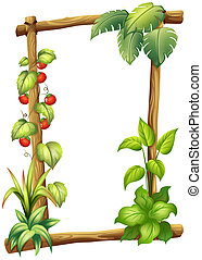 A frame with plants