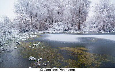 a freezing lake in the winter