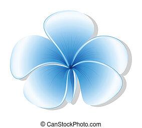 A fresh five-petal blue flower