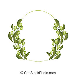 A Fresh Olive Wreaths on White Background