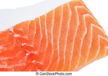 salmon - a fresh salmon fillet