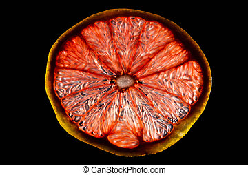 A fresh slice of grapefruit cut into thin slices on a black background and highlighted.