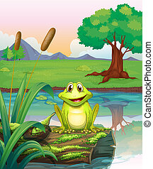Illustration of a frog at the lake
