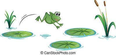 Illustration of a frog at the pond with waterlilies on a white background