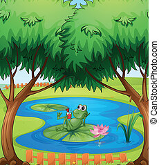 A frog - Illustration of a frog in a pond