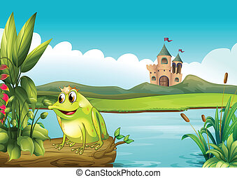 A frog with a crown - Illustration of a frog with a crown