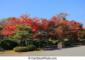 Garden of  kyoto To-ji Temple