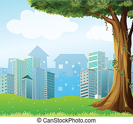 A giant tree with vine plants across the high buildings