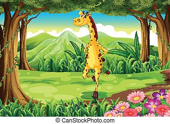 a, girafe, à, les, forêt