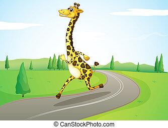 A giraffe running along the road