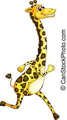 A giraffe running