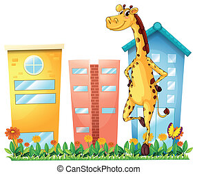 A giraffe standing in front of the tall buildings