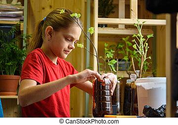 A girl plants seedlings of fruit plants in plastic bottles for the garden
