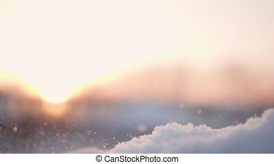 A girl throws a snow in winter Park. Hands close-up on sunset background