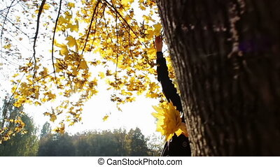 A girl throws yellow leaves from the tree branches of trees in autumn park.